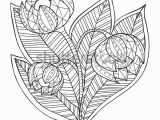 Free Nature Coloring Pages for Adults Hand Drawn Artistic Ethnic ornamental Patterned