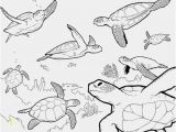 Free Ocean Life Coloring Pages Lost Ocean Coloring Book the Perfect Pics Lost Ocean