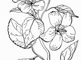 Free Online Coloring Pages for Adults Flowers Free Roses Printable Adult Coloring Page the Graphics Fairy