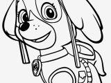 Free Paw Patrol Skye Coloring Pages Paw Patrol Skye Afdruk Paw Patrol Coloring Games 22 Pics
