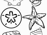 Free Preschool Summer Coloring Pages Seashell03 768—1024 Printables