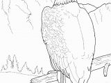 Free Printable Coloring Pages Of Eagles Free Printable Bald Eagle Coloring Pages for Kids