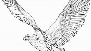 Free Printable Coloring Pages Of Eagles Free Printable Eagle Coloring Pages for Kids