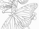Free Printable Coloring Pages Of Flowers and butterflies butterfly Coloring Pages