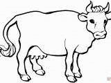 Free Printable Cow Coloring Pages Mewarnai Gambar Sapi 1