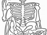Free Printable Halloween Skeleton Coloring Pages Free Printable Skeleton Coloring Pages for Kids