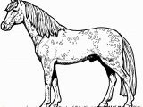 Free Printable Horseshoe Coloring Pages Printable Horse Coloring Pages Beautiful Graphy Horse Coloring