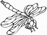 Free Printable Insect Coloring Pages Dragonfly