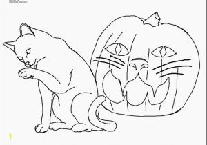 Free Printable Kitty Cat Coloring Pages Coloring Pages Kittens Printable Beautiful Cat Coloring Pages Free