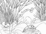 Free Printable Ocean Coloring Pages for Adults Get This Ocean Coloring Pages for Adults 8b461