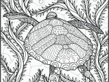 Free Printable Ocean Coloring Pages for Adults Ocean Adult Coloring Pages at Getdrawings