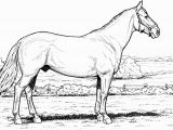 Free Printable Realistic Horse Coloring Pages Free Horse Coloring Pages