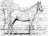 Free Printable Realistic Horse Coloring Pages Free Printable Realistic Horse Coloring Pages Coloring Home