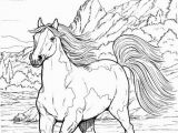 Free Printable Realistic Horse Coloring Pages Horse Coloring Pages for Adults Best Coloring Pages for Kids