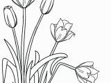 Free Printable Tulip Coloring Pages Free Printable Tulip Coloring Sheets Tulip Coloring Pages Template