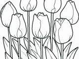 Free Printable Tulip Coloring Pages Tulip Coloring Pages Flower Colouring Free Printable Sheets