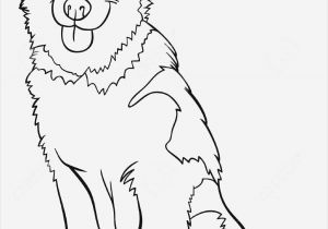Free Printable Wild Animal Coloring Pages ▷ Free Collection 13 Lovely Coloring Pages to Print for Free