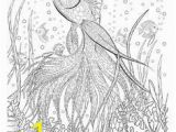 Free Sue Coccia Coloring Pages 338 Best Birds Coloring Page Images In 2020