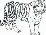 Free Tiger Coloring Pages Tiger Coloring Pages Ideas with Awesome Pattern