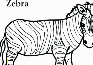 Free Zebra Coloring Pages to Print Zebra Color Page Zebra Coloring Book Zebra Coloring Book Color Book