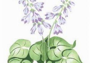Garden Mural Stencils 57 Best Individual Flower Wall Stencils Images