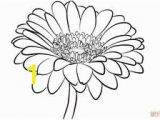 Gerbera Daisy Coloring Page Gerber Daisy Coloring Pages at Getdrawings