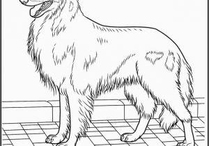 Glitter force Coloring Pages Printable 🎨 Hund 351 Ausmalbilder Kostenlos Zum Ausdrucken
