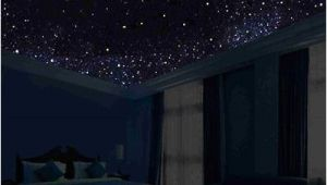 Glow In the Dark Ceiling Murals Glow In the Dark Night Sky Mural Stars Constellations Milky Way 5 Ft
