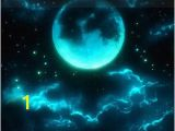 Glow In the Dark Space Wall Mural Glow In the Dark Meteor Shower Star Ceiling 14 by