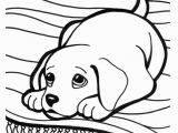 Golden Retriever Cute Puppy Coloring Pages Golden Retriever Puppy Drawing at Getdrawings