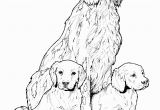 Golden Retriever Puppy Coloring Pages Pin On Colorings