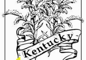 Goldenrod Coloring Page 158 Best State Coloring Pages and Embroidery Images On Pinterest