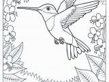 Goods and Services Coloring Pages Humming Bird Coloring Page