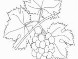 Grape Coloring Pages to Print Coloring Page Grapevine Quilling
