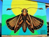 Great Mural Wall Of topeka 10 Endangered Species Murals Connect Munities to the