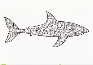 Great White Shark Coloring Pages Free Printable Great White Shark Coloring Pages Beautiful 28