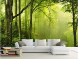 Green forest Wall Mural Any Size Fresh Green forest Nature Tv Backdrop Wall Mural 3d Wallpaper 3d Wall Papers for Tv Backdrop Canada 2019 From Wallpaper Cad