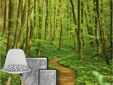 Green forest Wall Mural Green forest Path Wall Mural Wallpaper forest