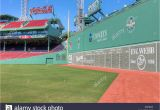 Green Monster Wall Mural the Green Monster Stockfotos & the Green Monster Bilder Alamy