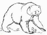 Grizzly Bear Coloring Pages Best Grizzly Bears Coloring Pages Design