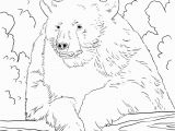 Grizzly Bear Coloring Pages Grizzly Bear Coloring Page Coloring Pages