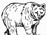 Grizzly Bear Coloring Pages Grizzly Bear Coloring Page Twisty Noodle