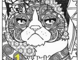 Grumpy Cat Coloring Pages Dover Creative Haven Grumpy Cat Hates Coloring 3