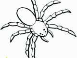 Halloween Spider Coloring Pages Free Printable Halloween Spider Coloring Pages
