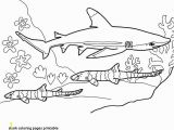 Hammerhead Shark Coloring Page 28 Beautiful Shark Coloring Pages Concept