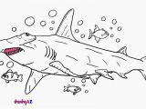Hammerhead Shark Coloring Page Lovely Hammerhead Shark Coloring Pages to Download Free Page Sheets