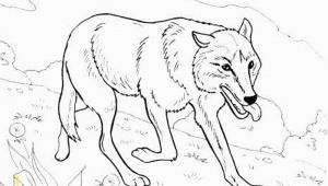 Hard Cute Animal Coloring Pages Printable Coloring Pages Wolves 10 S Rad Io Gora