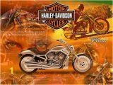 Harley Davidson Wall Mural Shop 38 ] Harley Davidson Motorcycle Wallpaper Border On