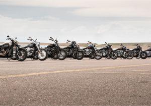 Harley Davidson Wall Murals 2019 softail Motorcycles