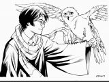 Harry Potter Coloring Pages Quidditch Free Harry Potter Coloring Pages 13 6638 and Page Csad